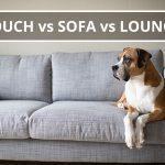 Q&A: Couch vs sofa vs lounge