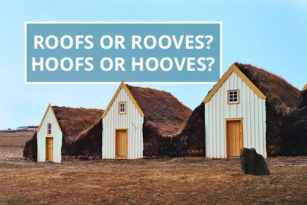Q A Roofs Or Rooves Hoofs Or Hooves Australian Writers Centre Blog