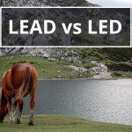 Q&A: Lead vs led