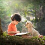 The smart Story Dogs who are helping kids to read!