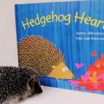 The turning point that led to James Antoniou becoming a published picture book author